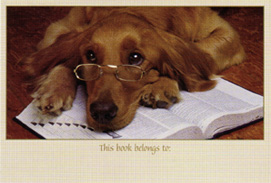 Dog on book